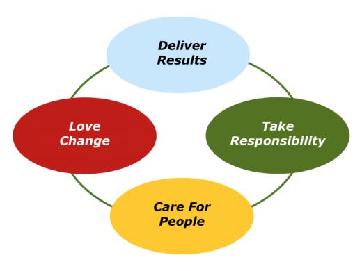 Companion Slides Values Driven Organisation.016