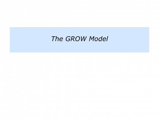 Slides The GROW Model.001