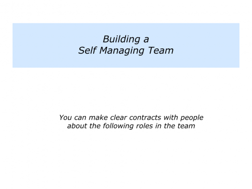 Slides Self Managing Team.001