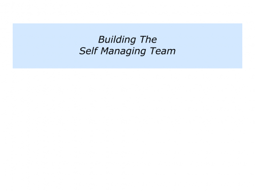 Slides Self Managing Team.021