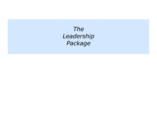Slides Leadership Package.007