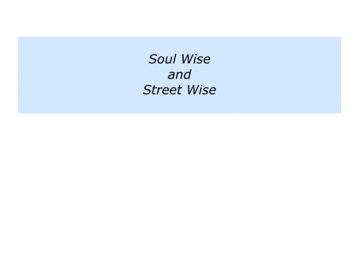 Slides Soul Wise and Street Wise.010