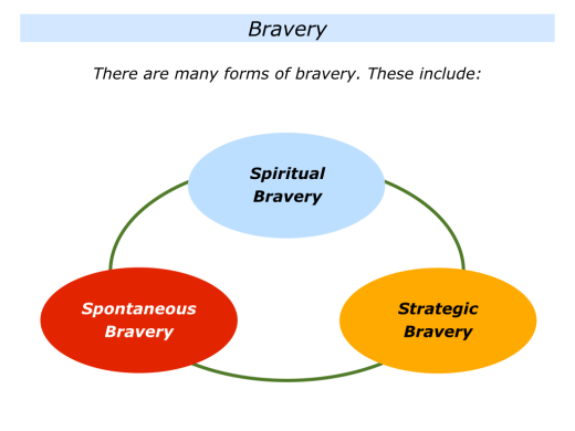 Slides Being Brave Because You Have Nothing To Lose.006
