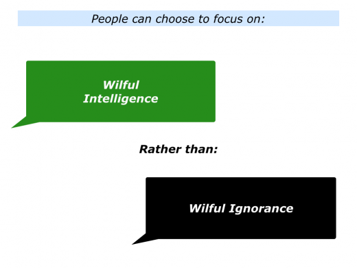 Slides Wilful Intelligence.001