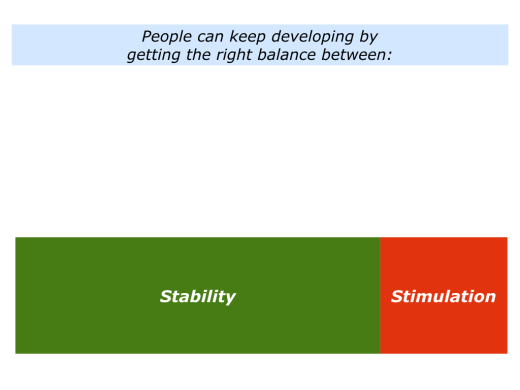 Slides Stability and Stimulation.001