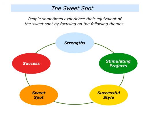 Slides Sweet Spot.003