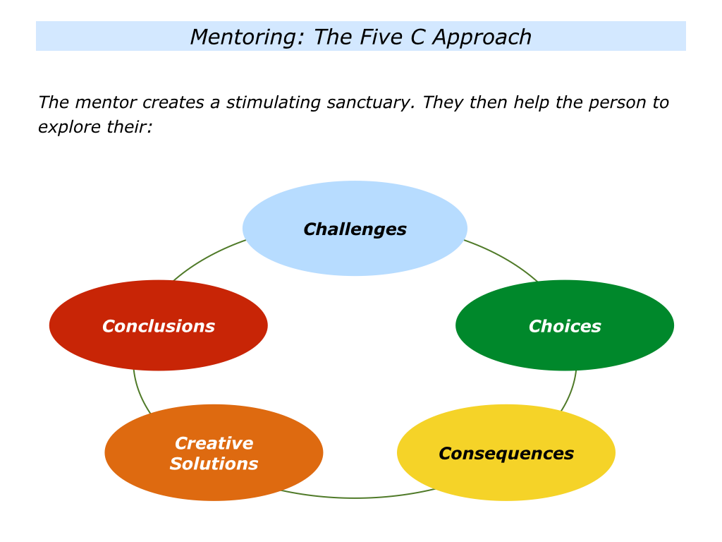 m is for mentoring the positive encourager m is for mentoring programme in your organisation 013