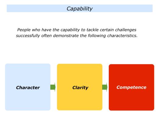 Slides Capability.001