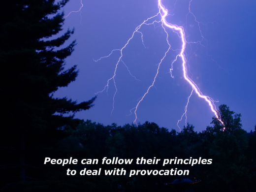 Slides Principles and Provocation.001